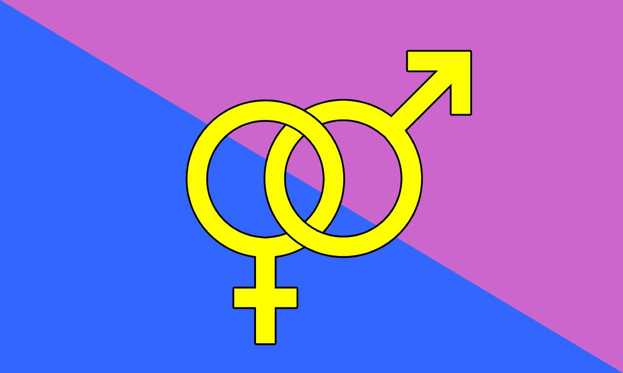 """the """"straight pride flag"""" rectangle bisected diagonally left to right, pink on top and blue on bottom. In the center, yellow interlink mars (male) and venus (female) symbols"""